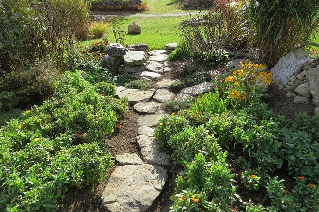 Ideas For Drought Tolerant Landscaping In Texas Ideal Turf