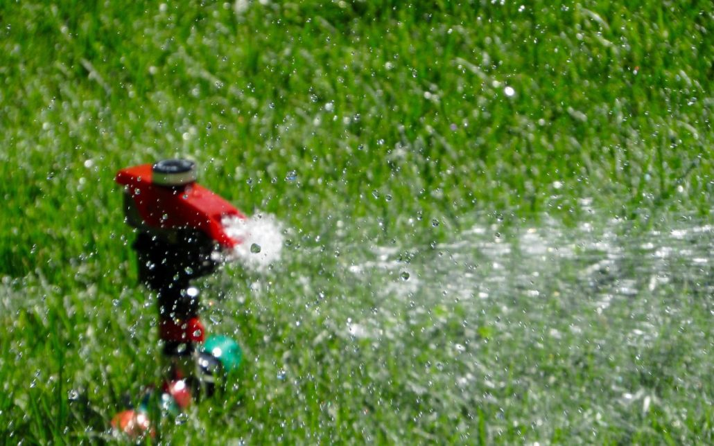 The Real Cost of Natural Grass 1
