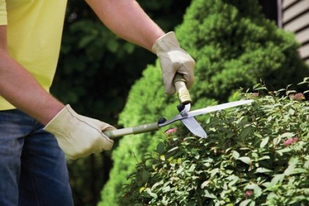 Learn to Love Your Yardwork 1