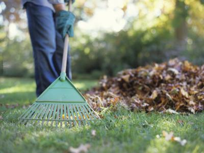 5 Techniques to Reduce Yard Work Chores 1