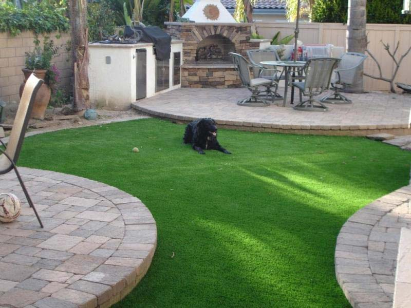 Solve Dog Potty Problems with Artificial Grass 2