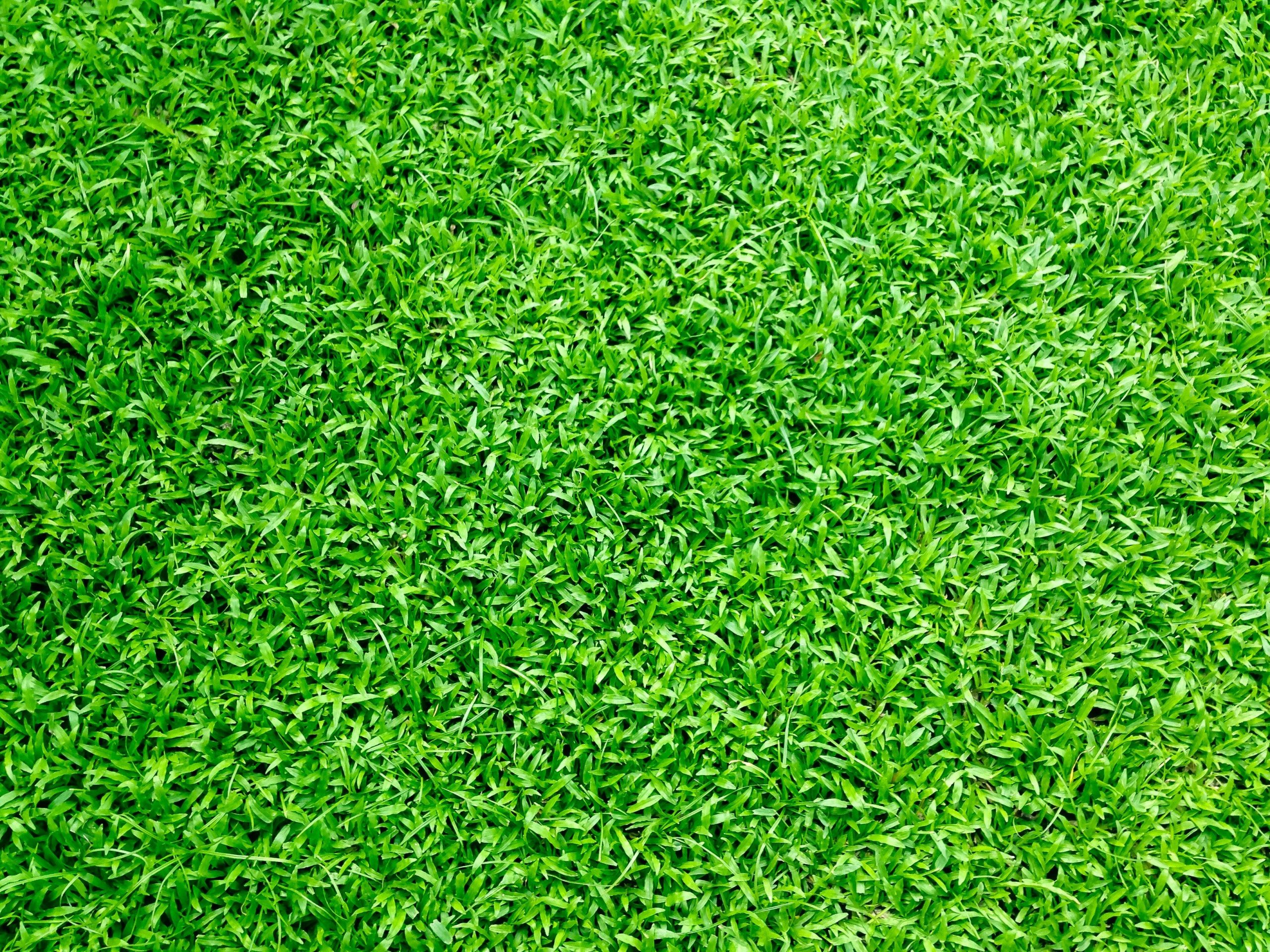 artificial turf installation, ideal turf