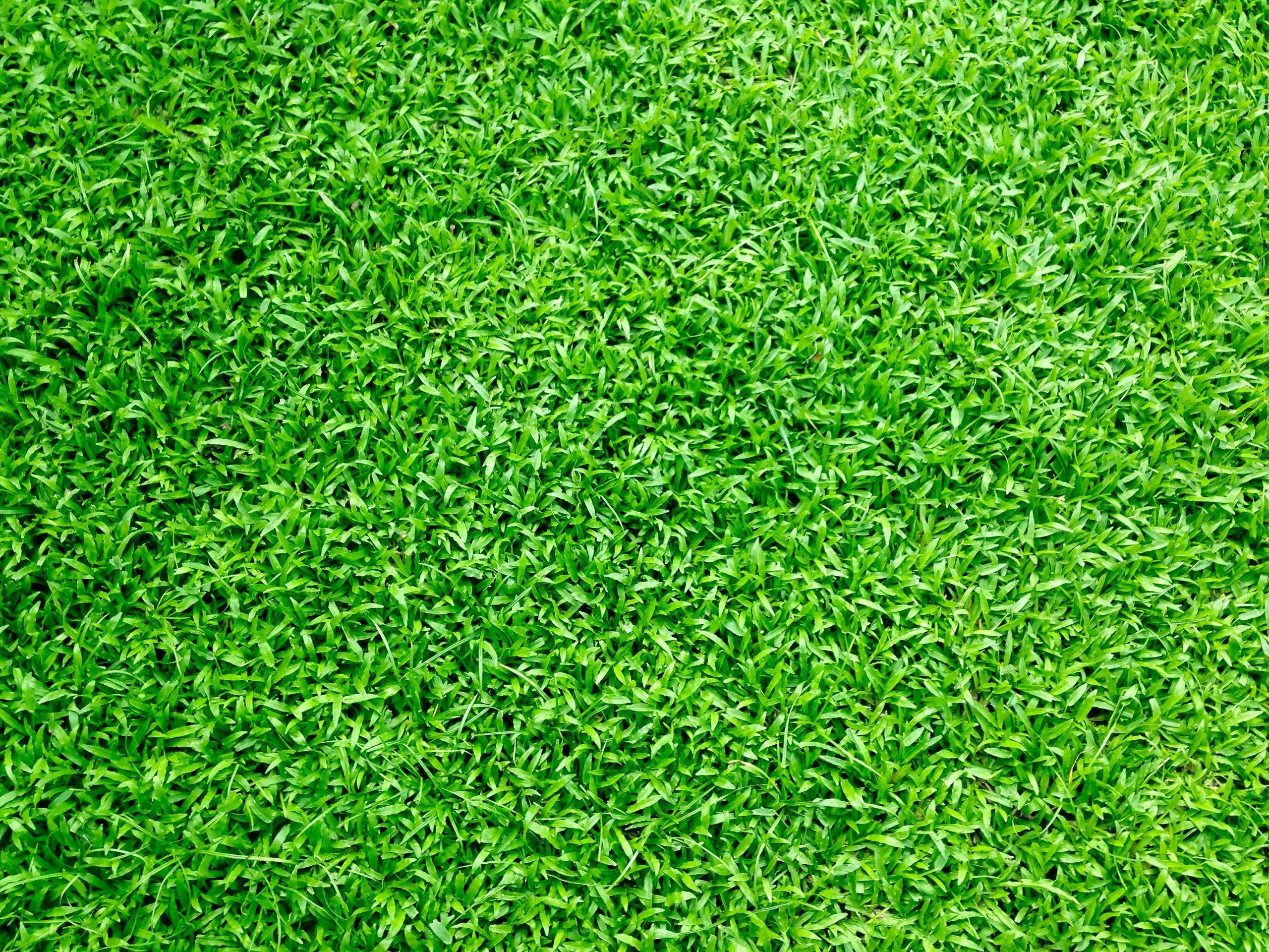 artificial turf installation, ideal turf