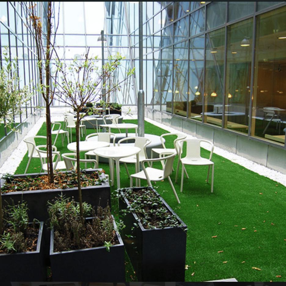 interior turf