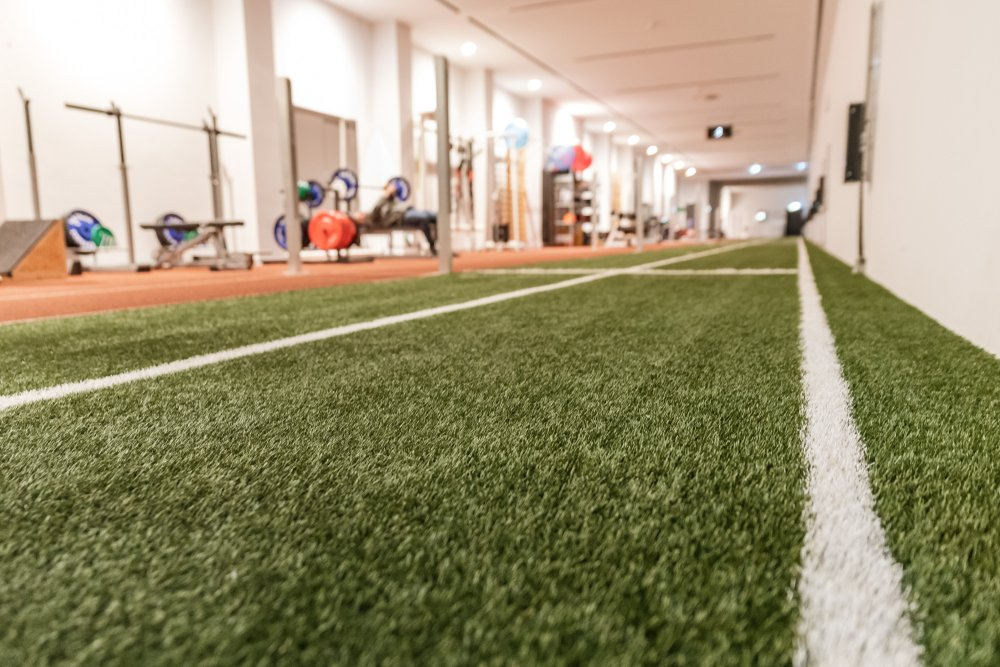 business owner looking for artificial turf