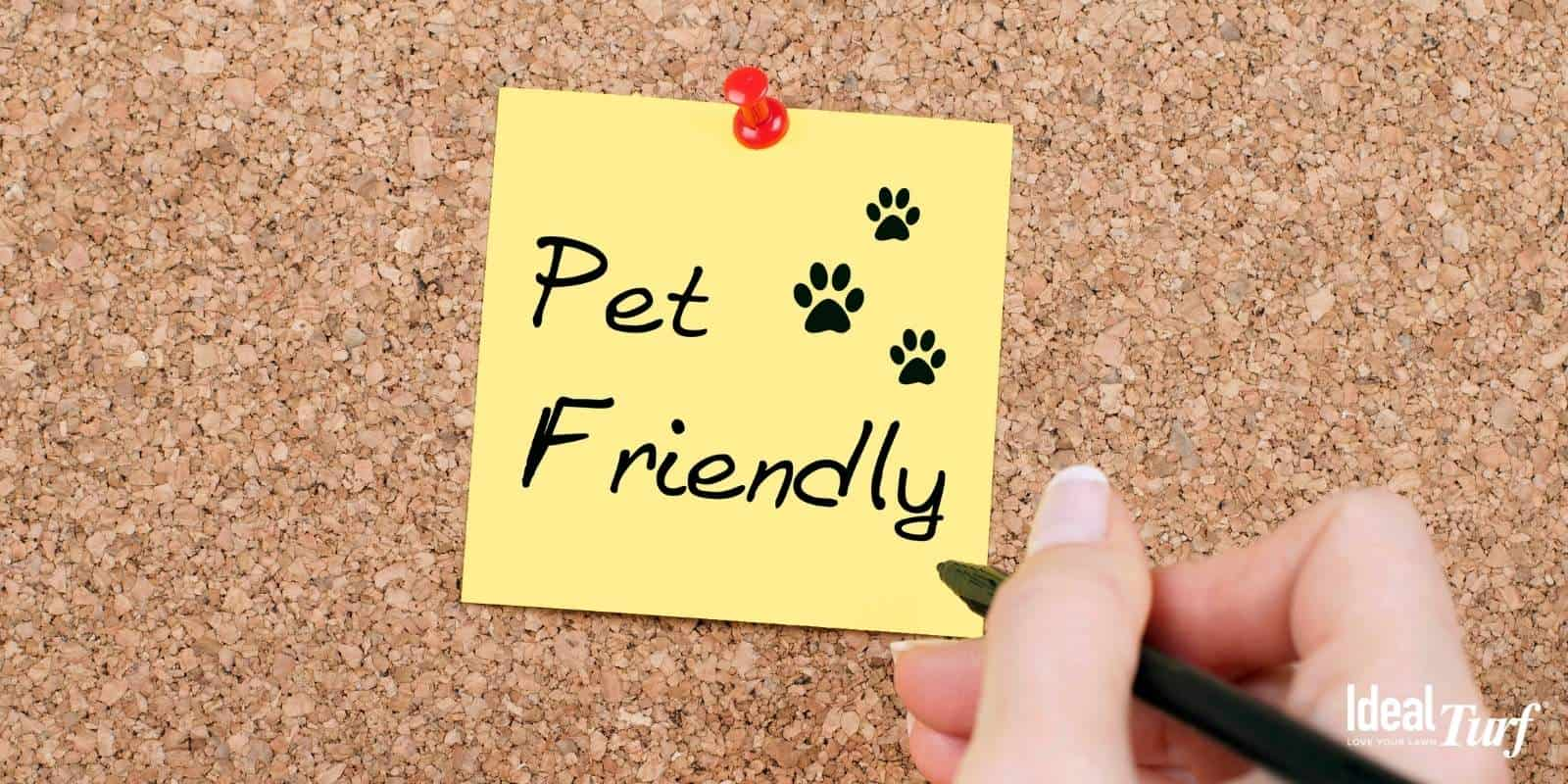 2. Pet-Friendly
