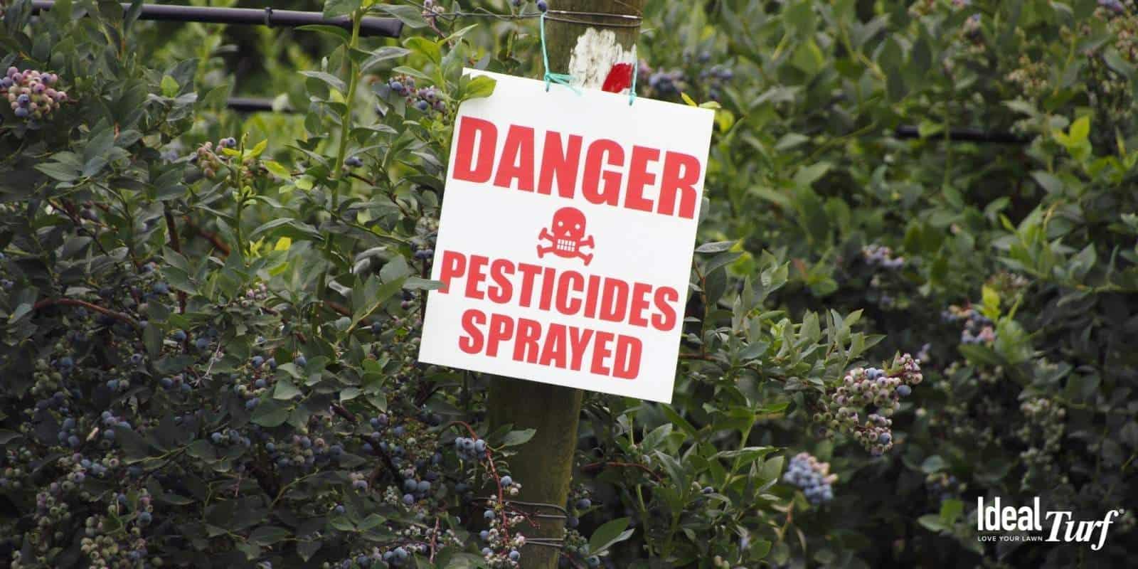 5. Eliminates Fertilizers & Pesticides