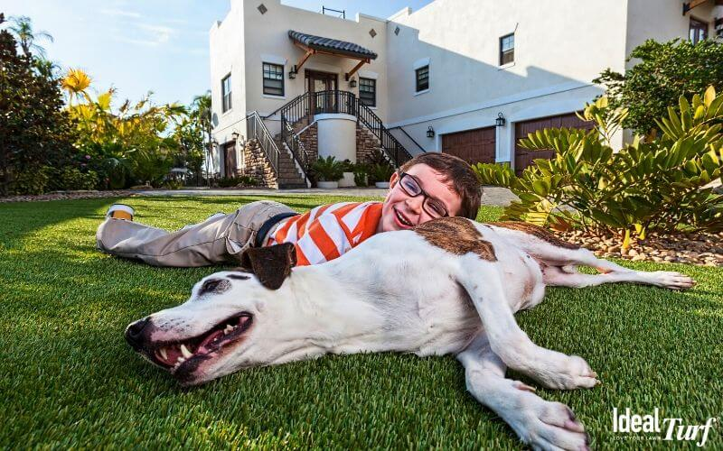 Replace Lawn with Pet-Safe Artificial Grass for Dogs