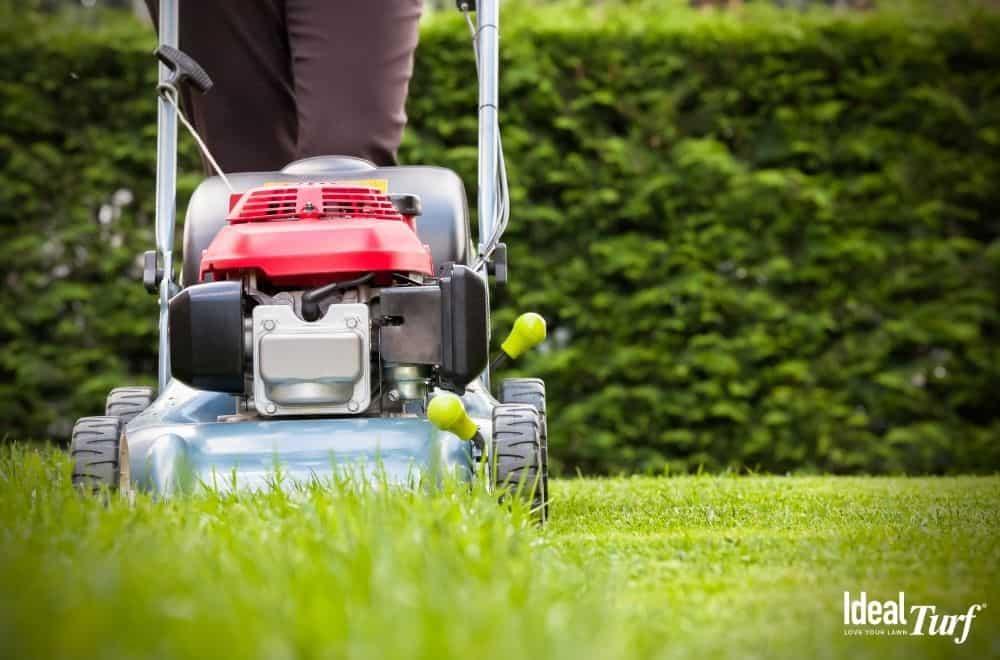 Man pushing lawn mower over natural grass yard
