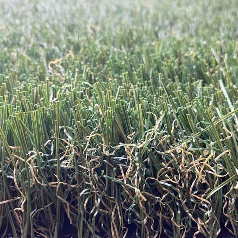 Meadow 90 1