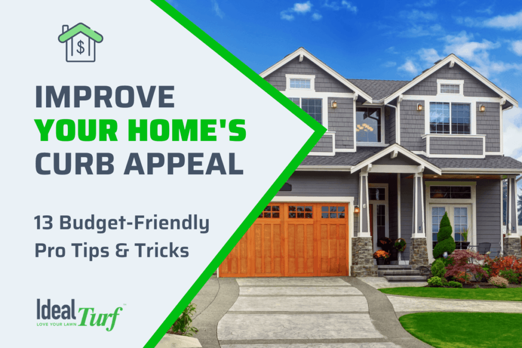 Improve Curb Appeal