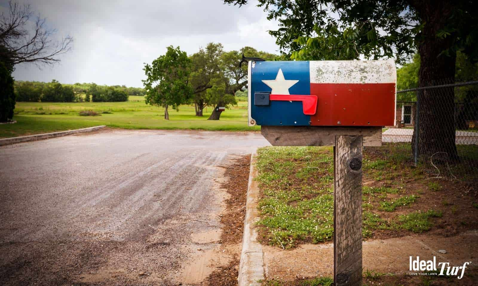 Mailbox Painted with the Texas Flag
