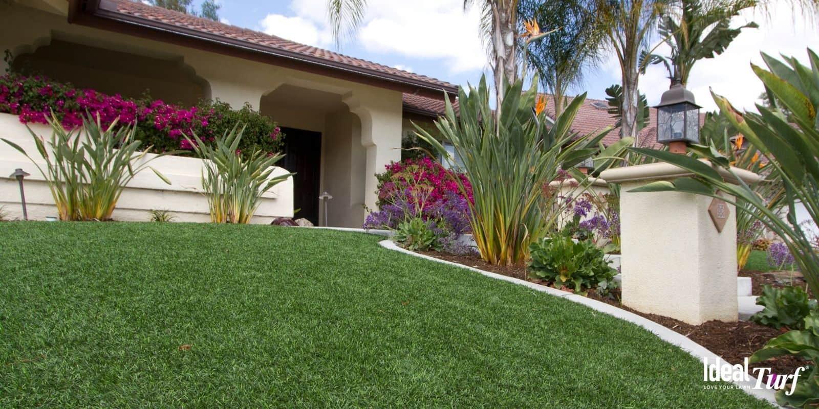 Dog-Safe Landscaping Plants