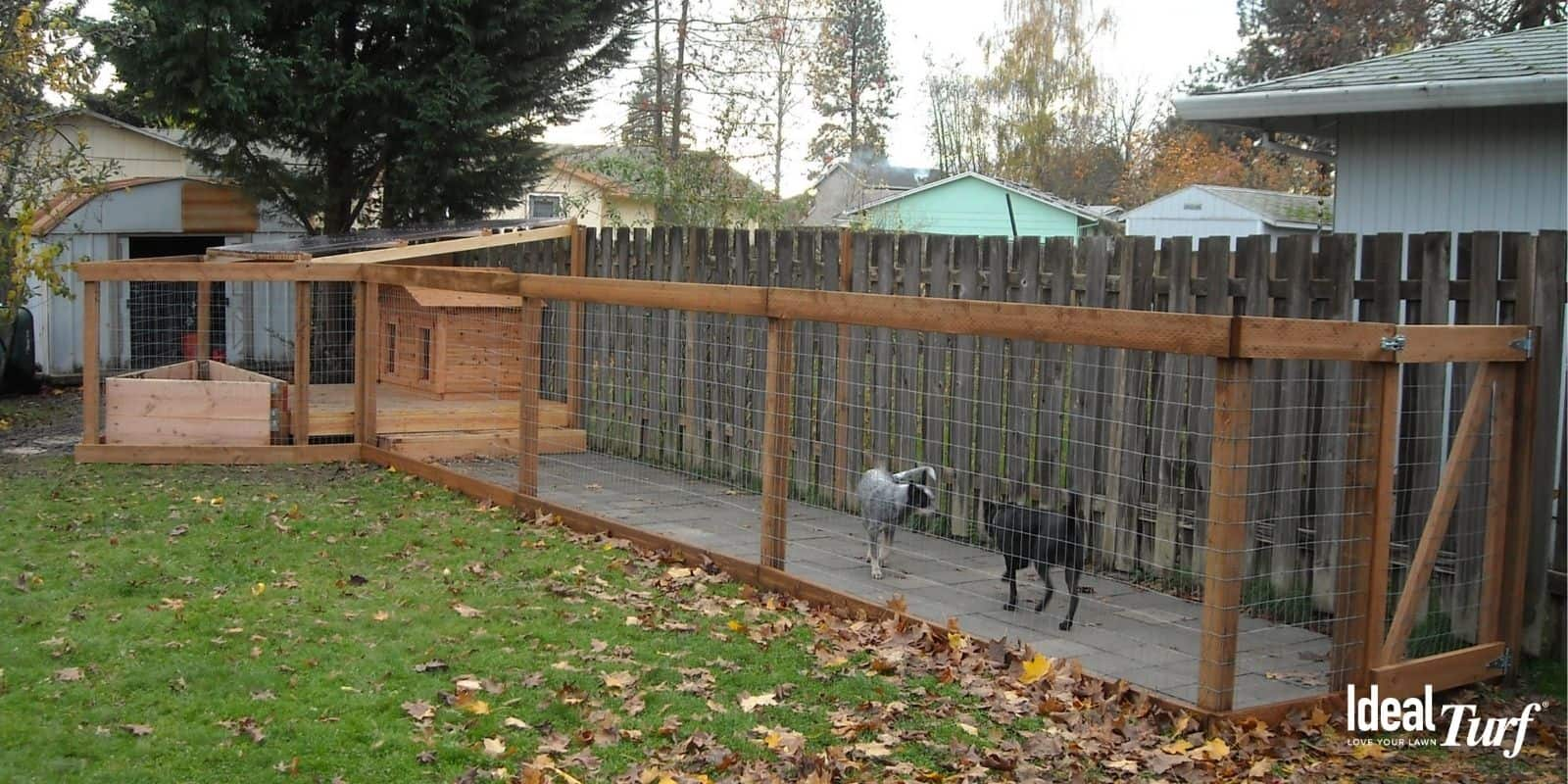 Dog Run With Paving Stone Ground Cover