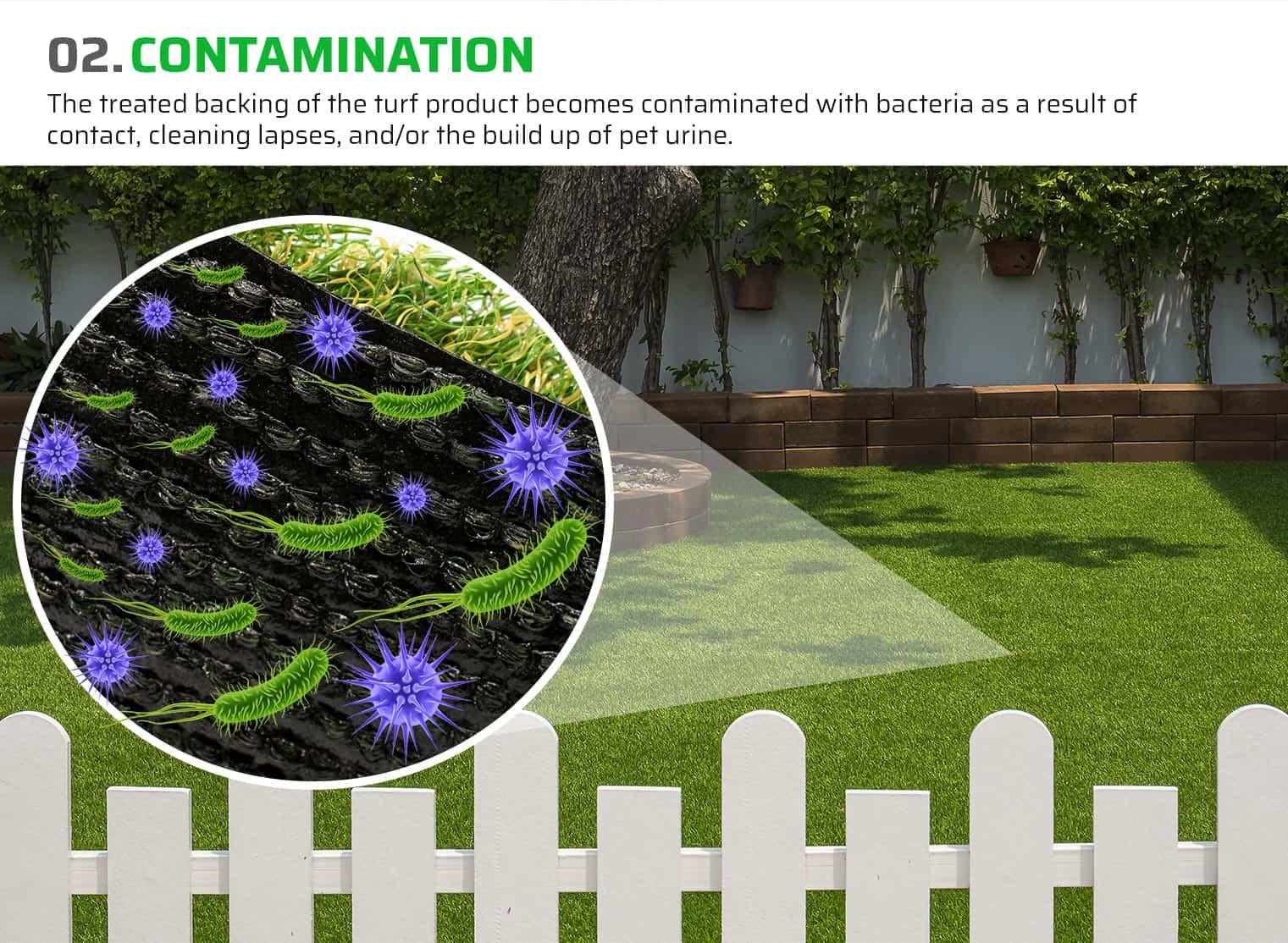 02. Contamination