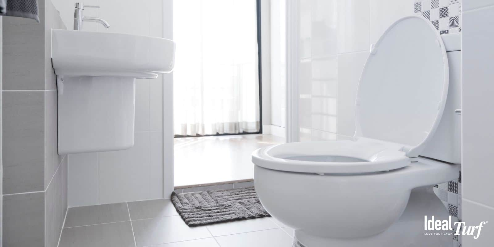 Install a Low-Flow Toilet