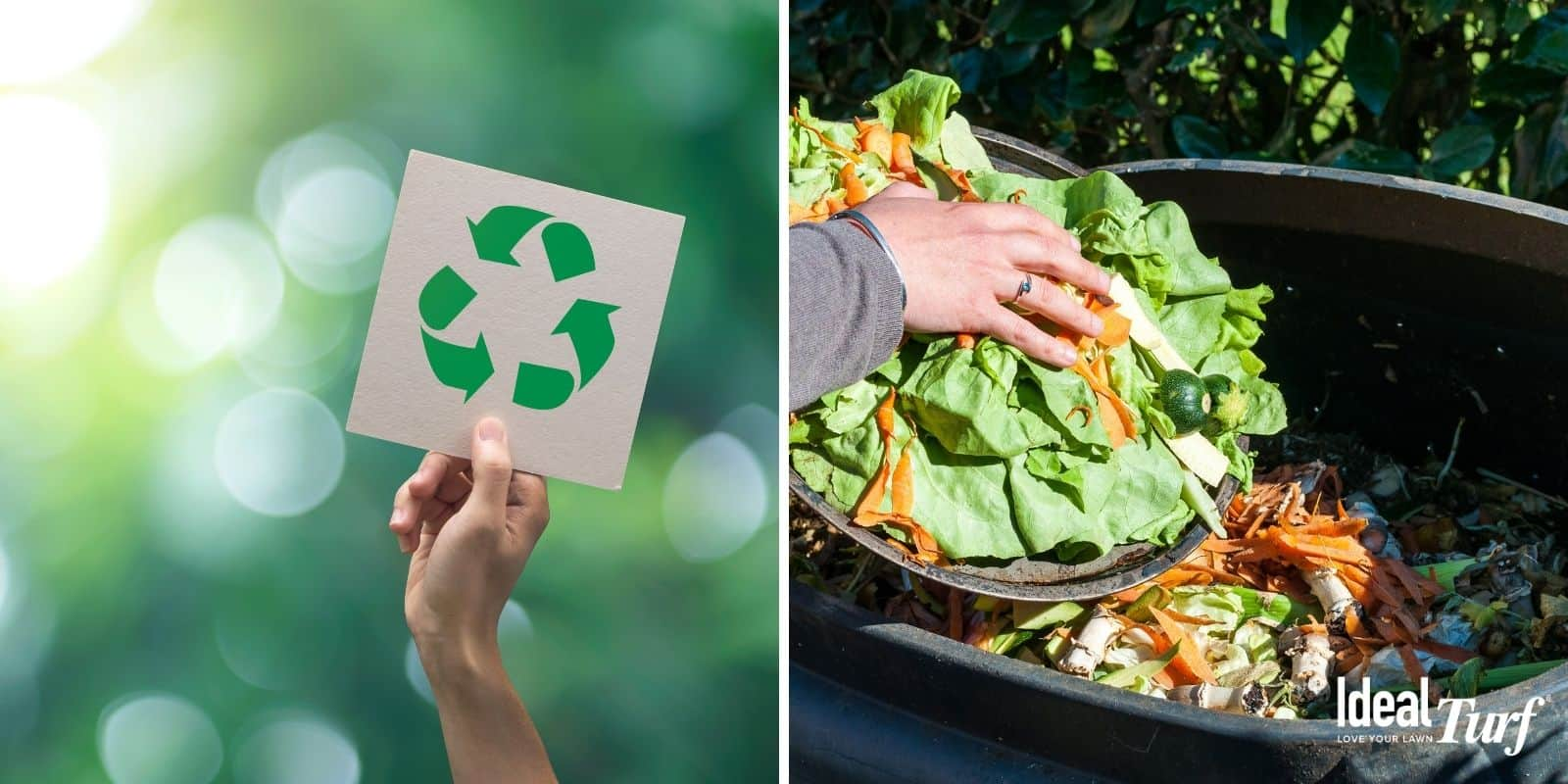 Start Recycling & Composting