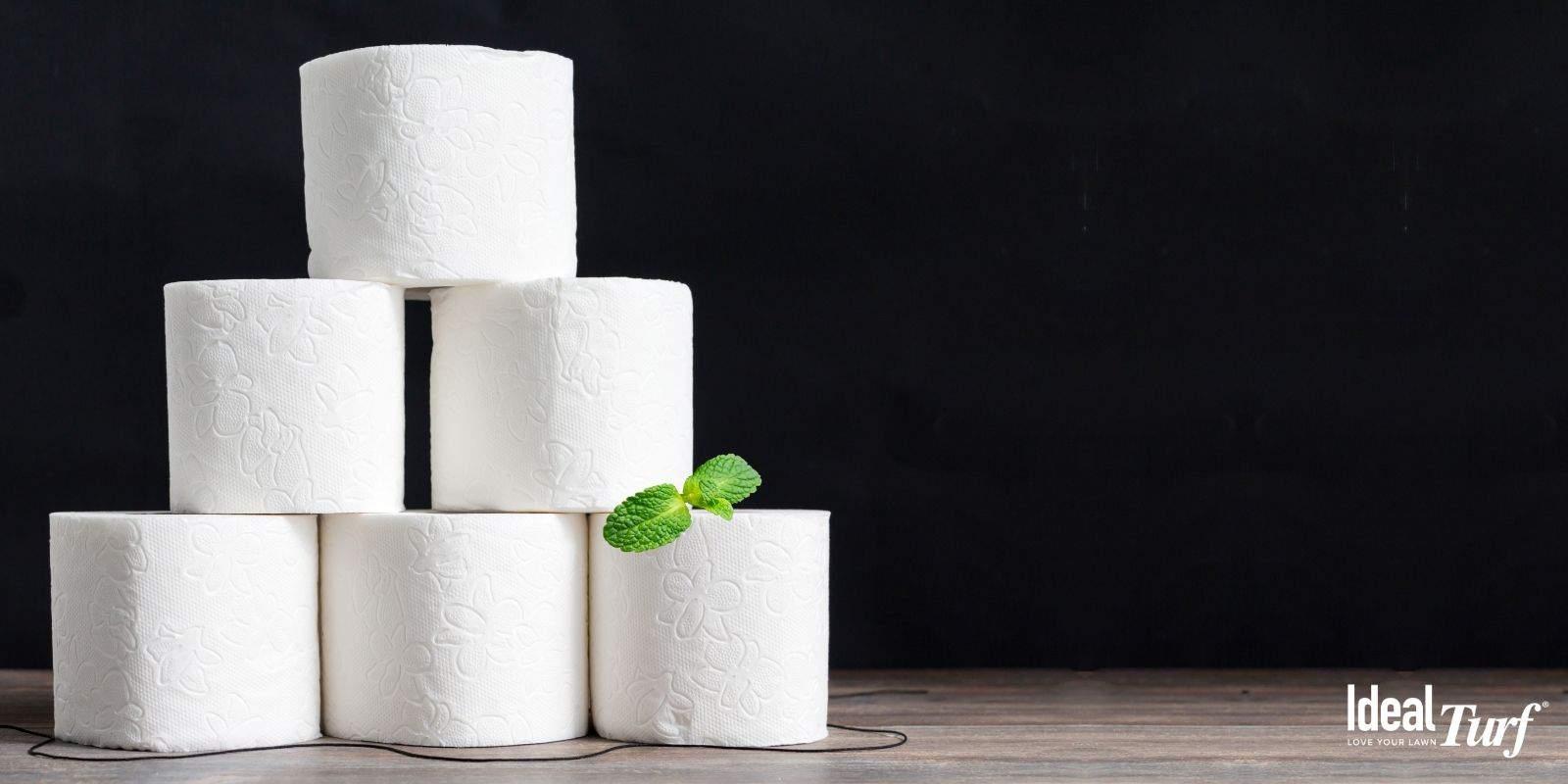 Use Eco-Friendly Toilet Paper