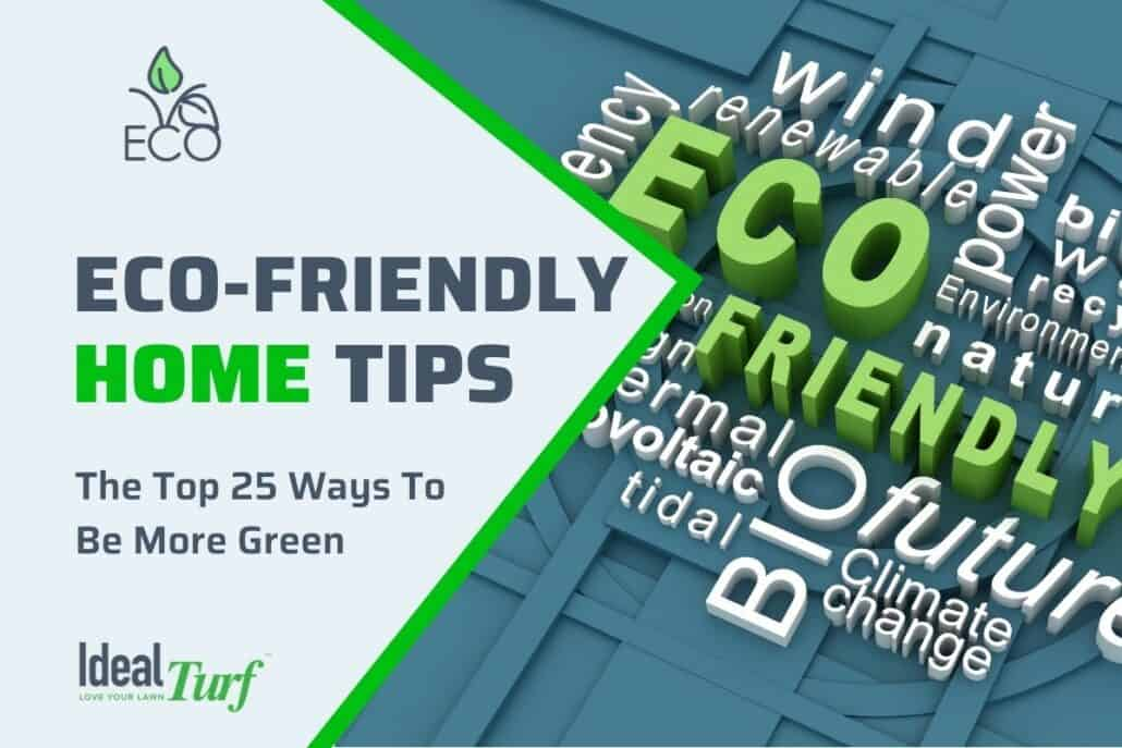 Eco-Friendly Home Tips