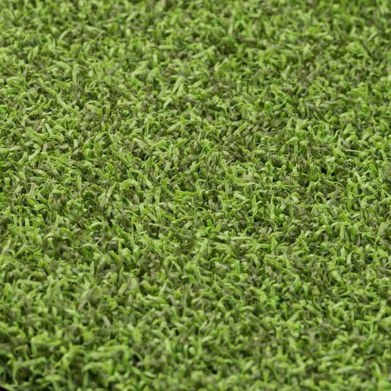 Ace Putt 56 closeup of turf fibers