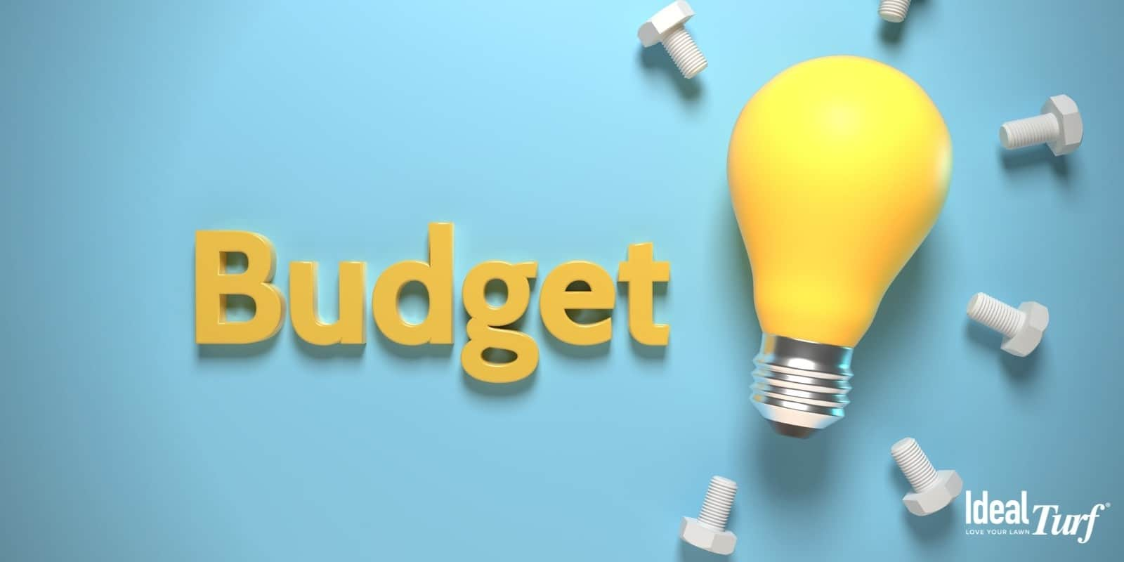 Light bulb with the word budget on light blue background