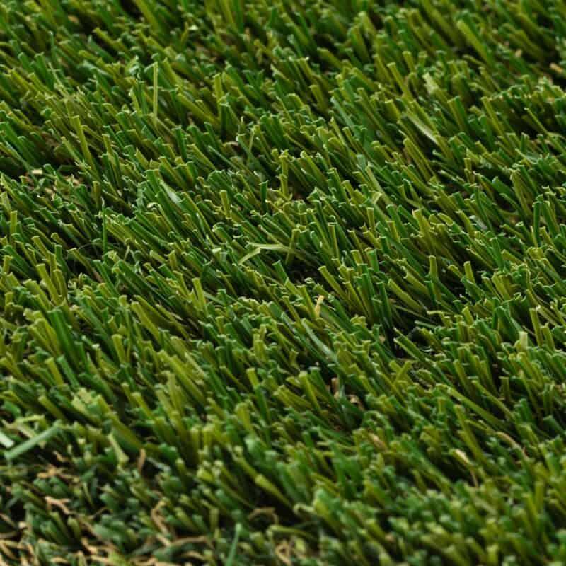 Meadow 80 closeup of turf fibers