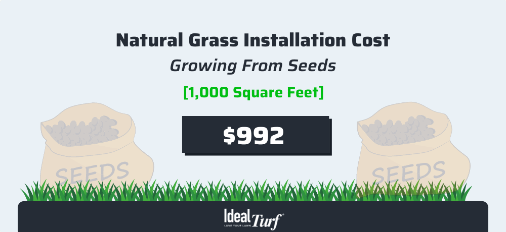 Natural Grass - Growing Seeds Cost