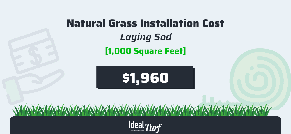 A Head-To-Head Comparison Guide Of Fake Grass vs. Real Grass: Which One Should You Choose 2