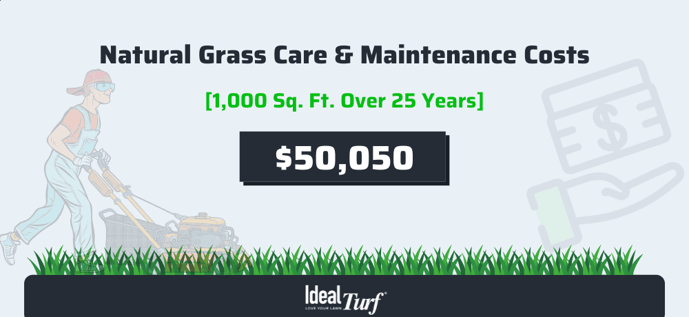 Real Grass Care & Maintenance Costs