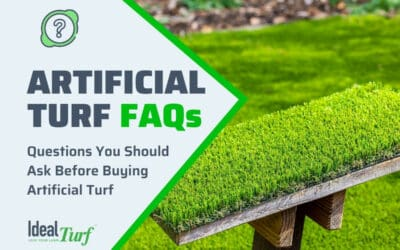 Questions Before Buying Turf