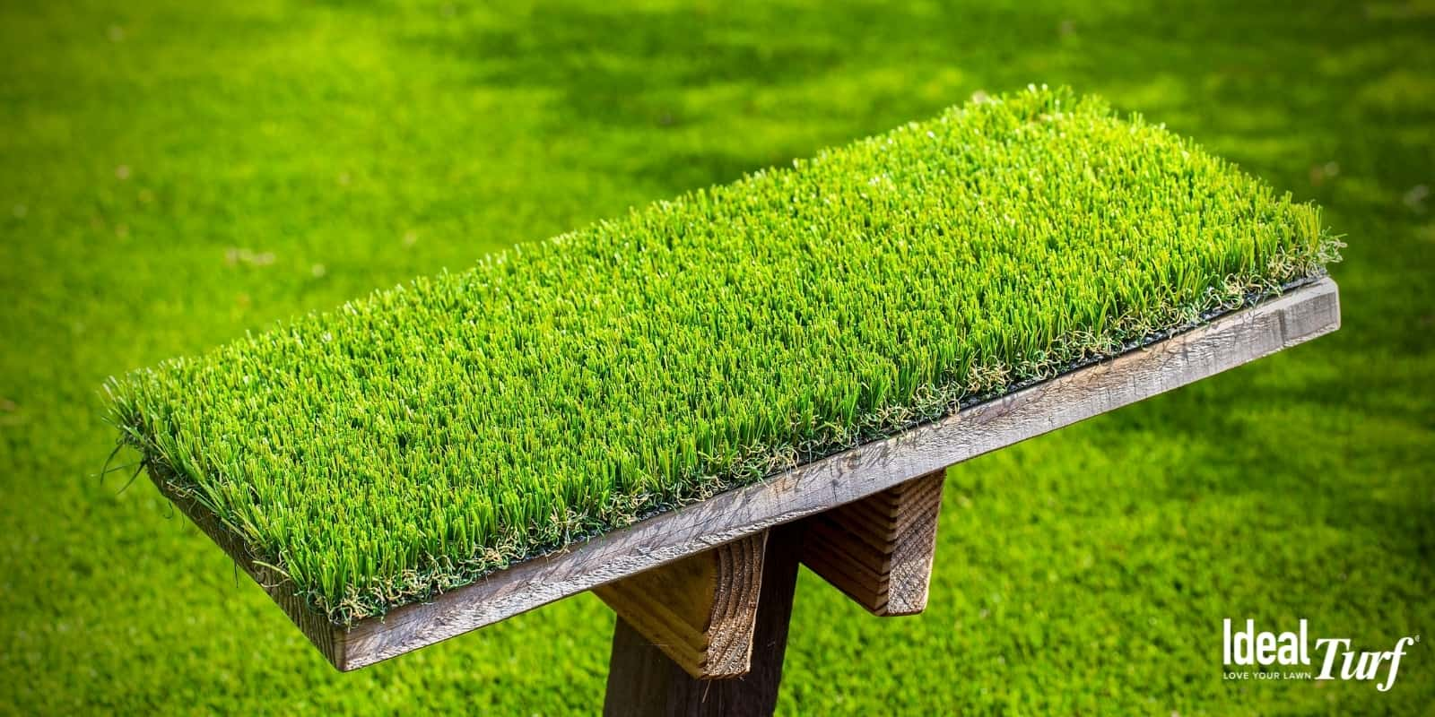 Artificial grass sample on display with artificial grass lawn in background
