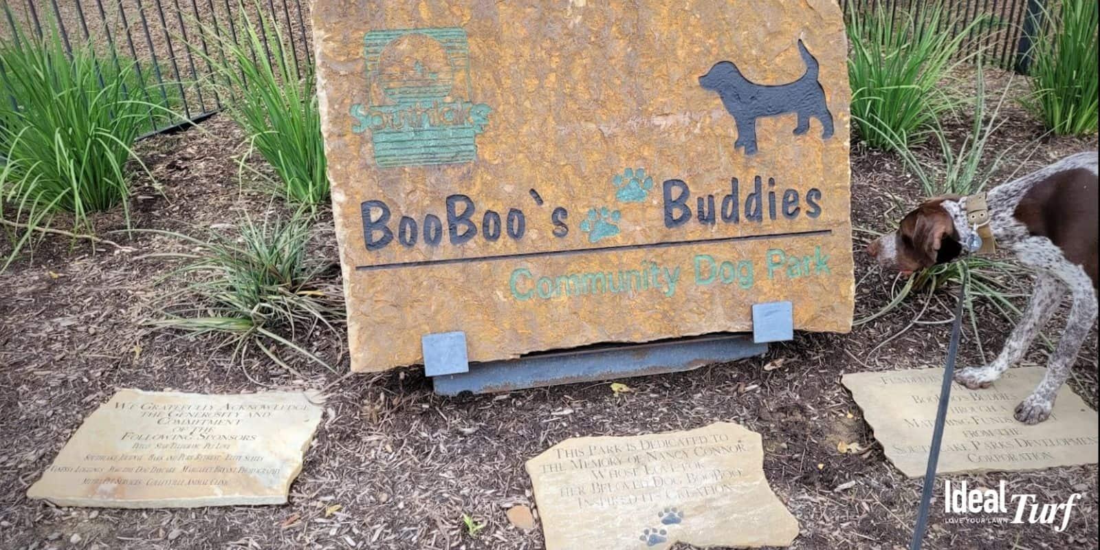 Boo Boos Buddies Dog Park