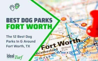 Best Dog Parks Fort Worth