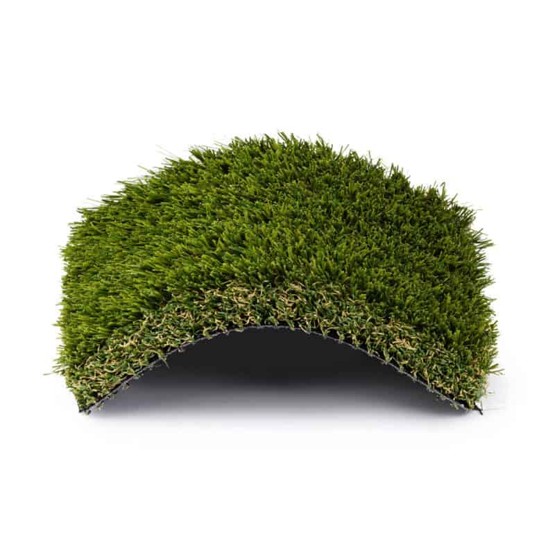 Rio Grande 101 turf product sample with center raised in an arch