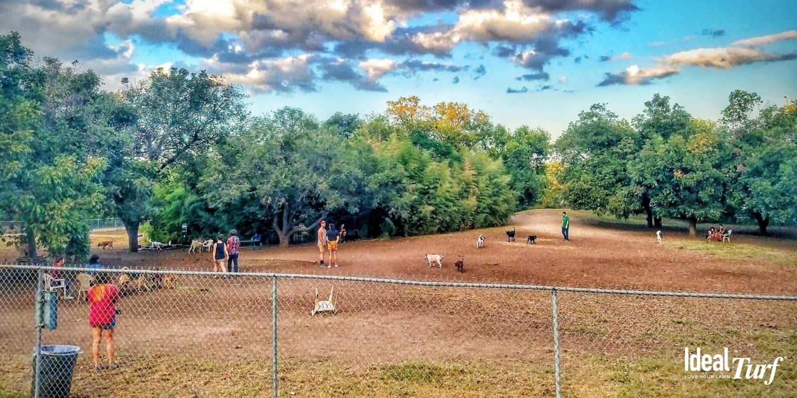 8. Norwood Estate Dog Park Austin TX