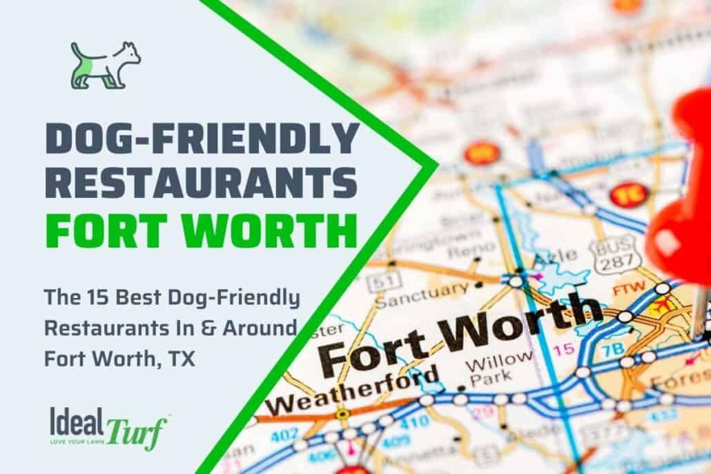 Dog-Friendly Restaurants Fort Worth