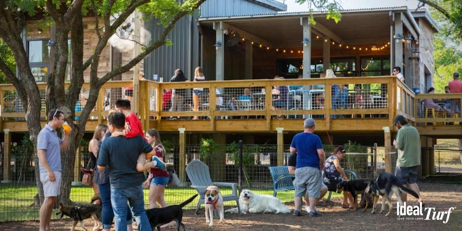 6. The Shack's Dining & Dog Park