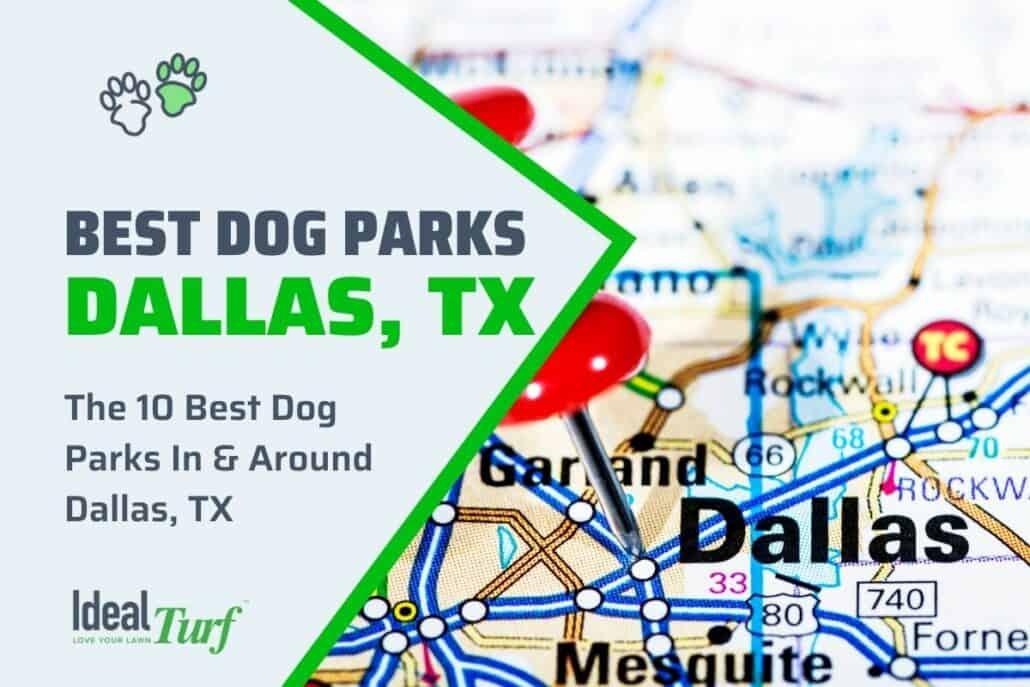 Best Dog Parks Dallas TX