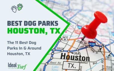 Best Dog Parks Houston TX